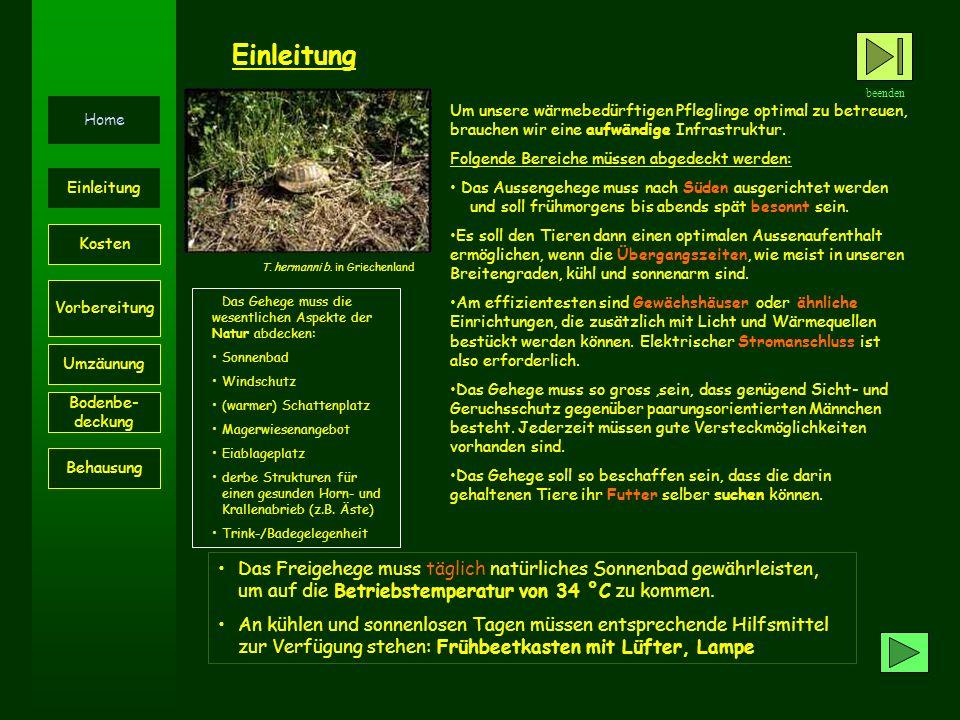Material: Gewächshaus:250 bis 1500 Euro/ bis 2250 sFr.