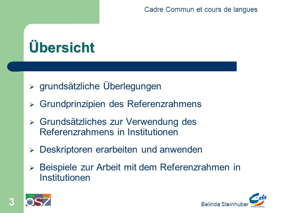 Cadre Commun et cours de langues Belinda Steinhuber 4 Die Motivation.