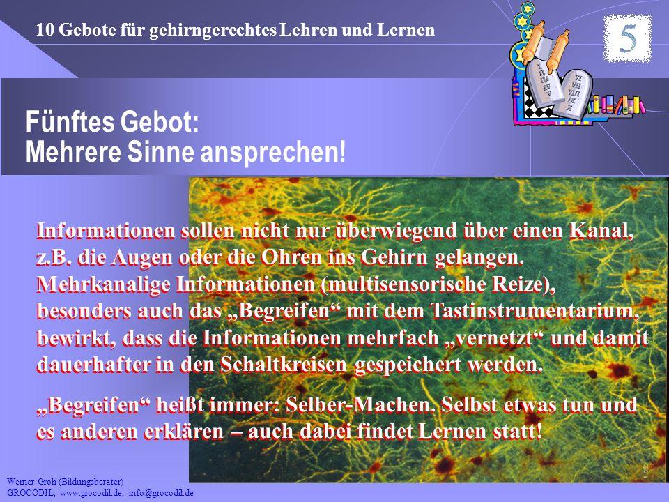 Werner Groh (Bildungsberater) GROCODIL, www.grocodil.de, info@grocodil.de Fünftes Gebot: Mehrere Sinne ansprechen! 10 Gebote für gehirngerechtes Lehre