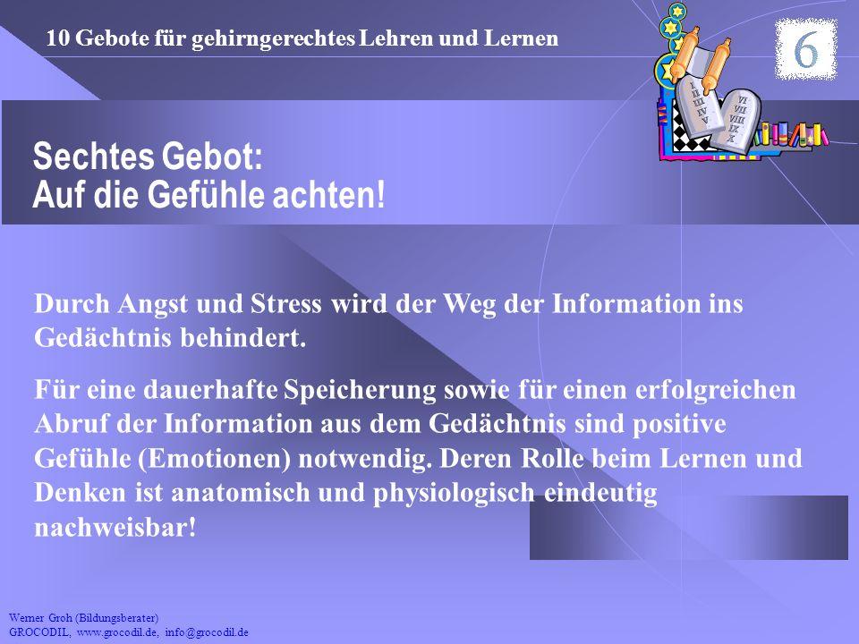 Werner Groh (Bildungsberater) GROCODIL, www.grocodil.de, info@grocodil.de Sechtes Gebot: Auf die Gefühle achten! Durch Angst und Stress wird der Weg d