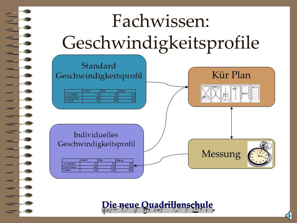 Fachwissen: Formationen Das Know-How der Quadrillenreiter wurde auf ein abstrakteres Niveau gehoben. Über die Software steht es allen zur Verfügung.