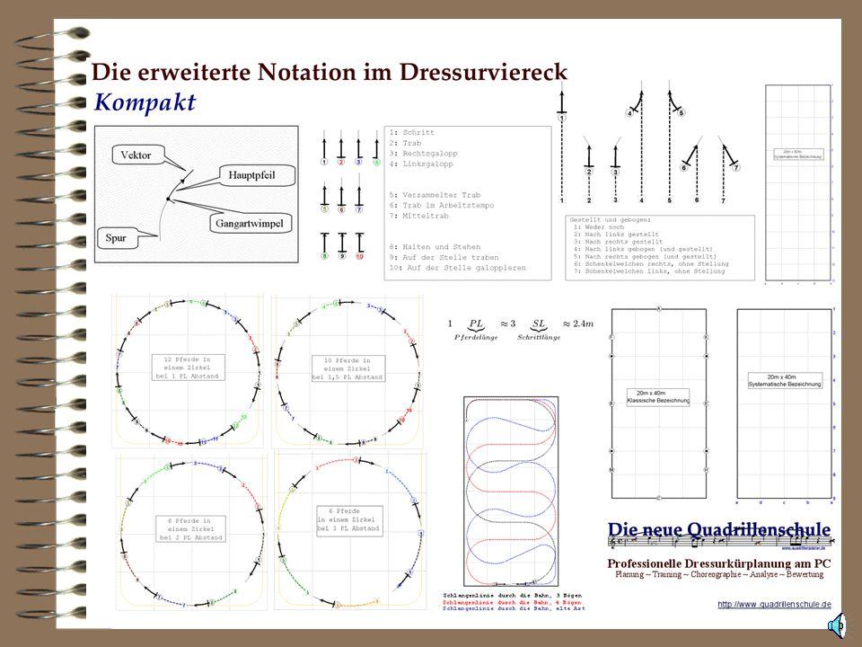 Die Basis: Eine aussagekräftige Notation Die Notation zeigt die Bewegung des Pferdes in der Reitbahn. Die Notation wurde auf Basis von drei Leitlinien