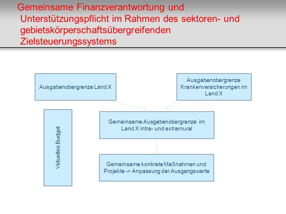 Gemeinsame Finanzverantwortung und Unterstützungspflicht im Rahmen des sektoren- und gebietskörperschaftsübergreifenden Zielsteuerungssystems Ausgaben