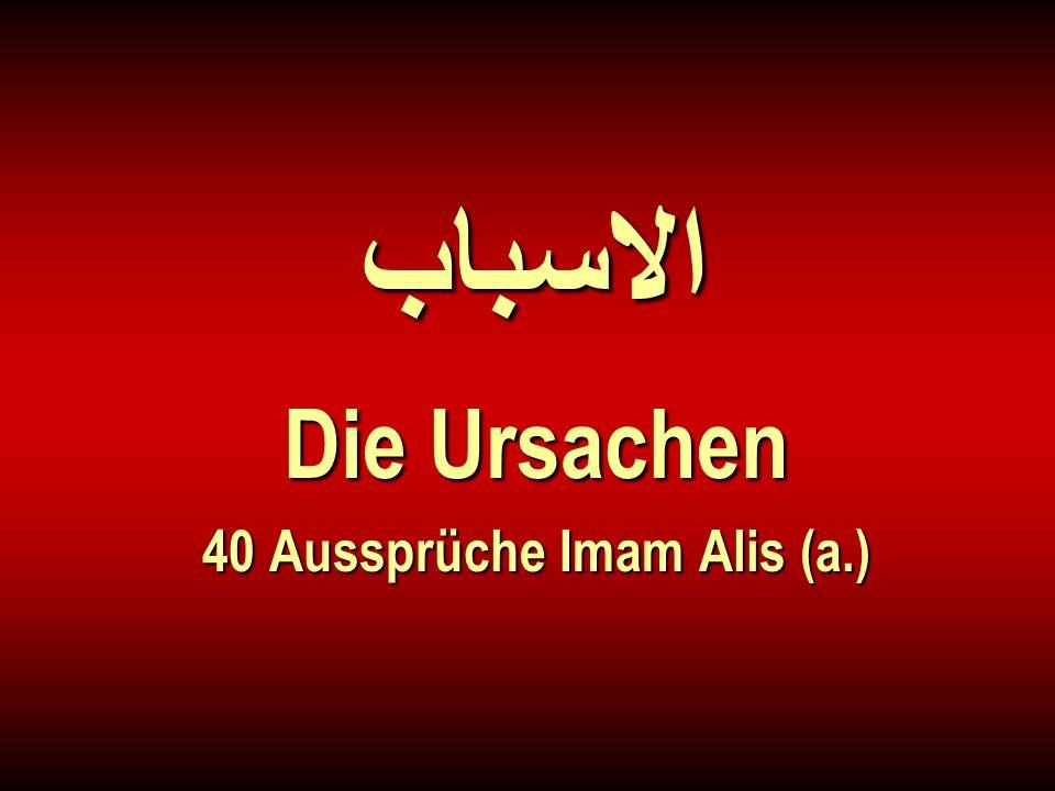 الاسباب Die Ursachen 40 Aussprüche Imam Alis (a.)