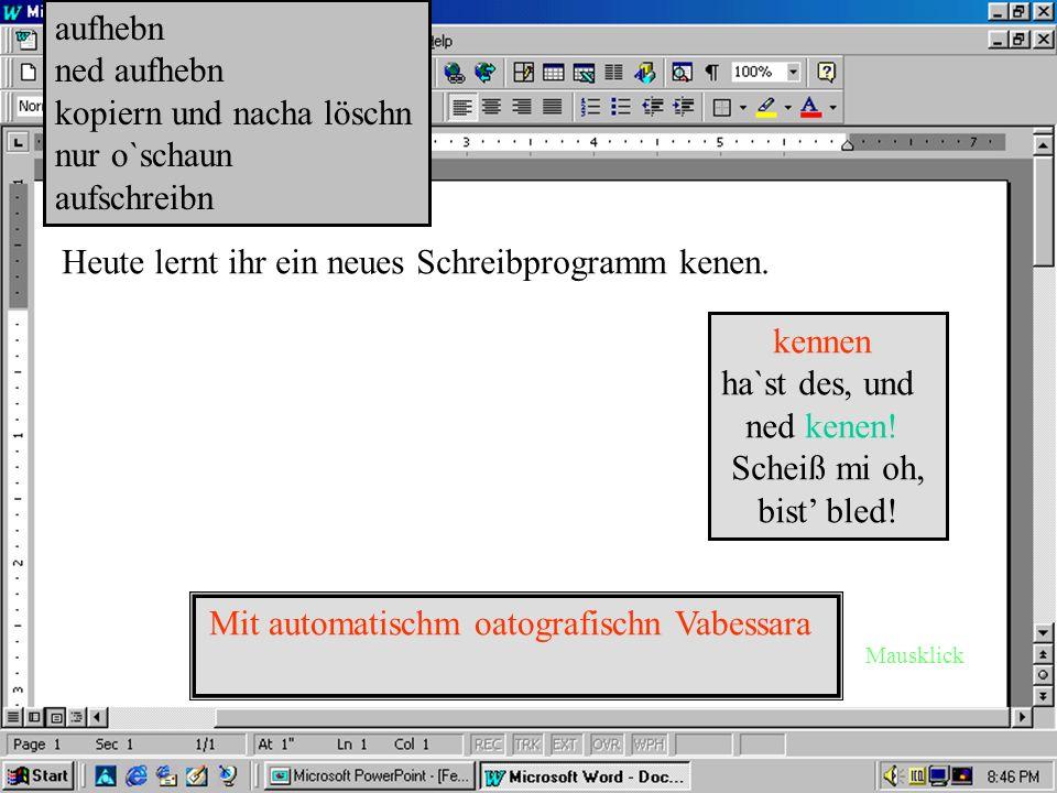 Schreibbrogram Winwörd.äxe Schärwärwersion 3.elf718.jg Alle Rechte vorbehoitn…kennst eh den Schas...