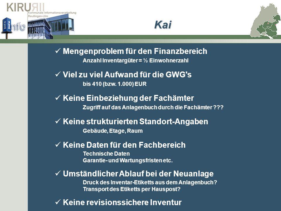 Mengenproblem für den Finanzbereich Anzahl Inventargüter = ½ Einwohnerzahl Viel zu viel Aufwand für die GWG's bis 410 (bzw. 1.000) EUR Keine Einbezieh