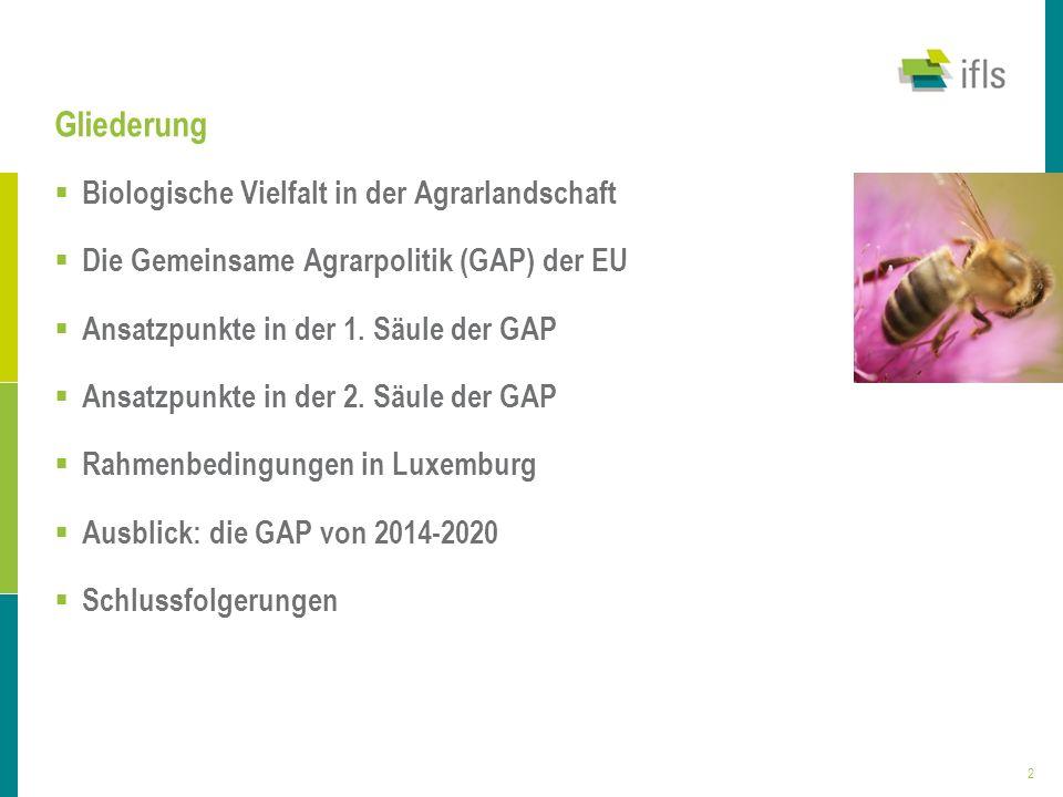 3 Biologische Vielfalt in der Agrarlandschaft Regional und europaweit bedeutende Tier- und Pflanzenarten in Luxemburg Starke Abnahme der biologischen Vielfalt in den letzten 30 Jahren Hauptgründe: Verlust und Zerschneidung von Lebensräumen durch Wachstum der Städte, Ausbau von Verkehrswegen und Intensivierung der Landwirtschaft Im Bestand bedroht: 50% der Säugetierarten, 60% der Amphibien- und Fischarten und 1/3 der Pflanzenarten Landschaft Luxemburgs: zunehmende Uniformierung und höchste Zerschneidungsrate in Europa