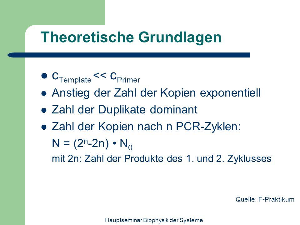 Hauptseminar Biophysik der Systeme Theoretische Grundlagen c Template << c Primer Anstieg der Zahl der Kopien exponentiell Zahl der Duplikate dominant