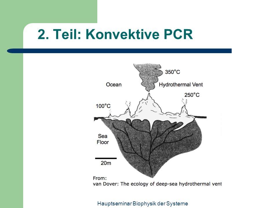 Hauptseminar Biophysik der Systeme 2. Teil: Konvektive PCR