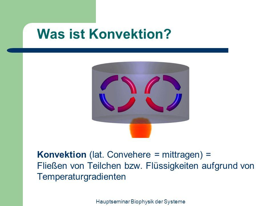 Hauptseminar Biophysik der Systeme Was ist Konvektion? Konvektion (lat. Convehere = mittragen) = Fließen von Teilchen bzw. Flüssigkeiten aufgrund von