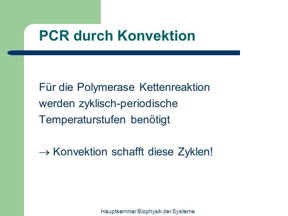 Hauptseminar Biophysik der Systeme PCR durch Konvektion Für die Polymerase Kettenreaktion werden zyklisch-periodische Temperaturstufen benötigt Konvek