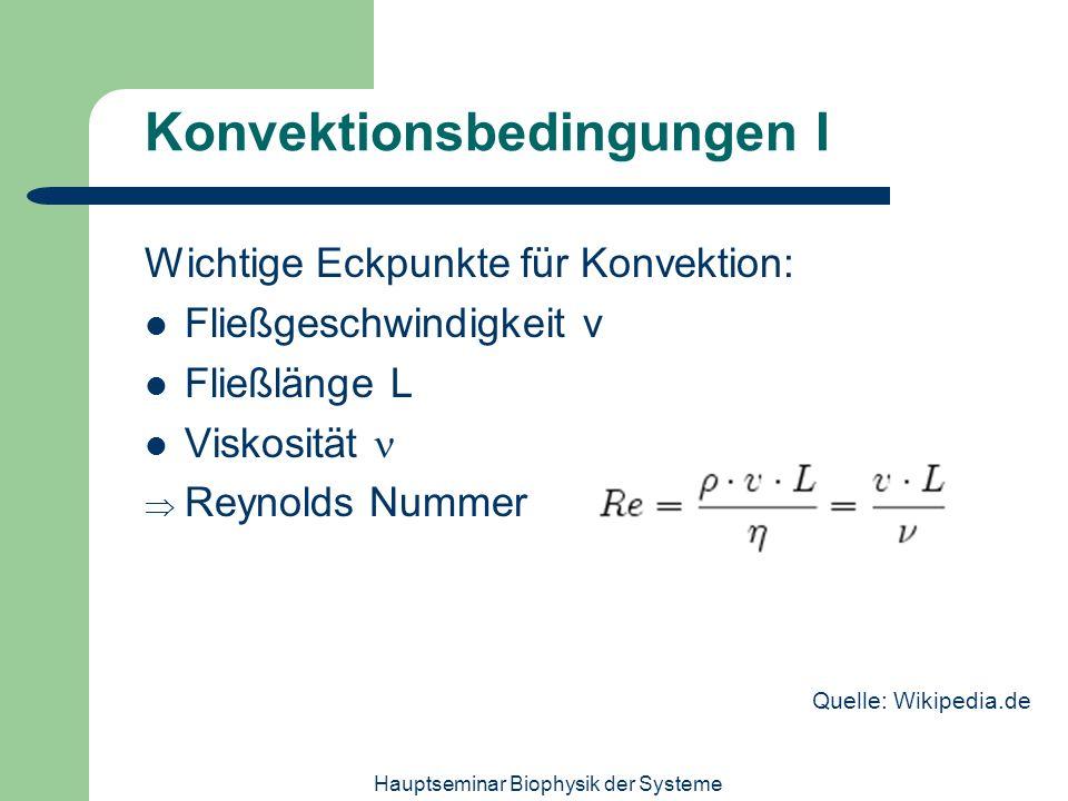Hauptseminar Biophysik der Systeme Konvektionsbedingungen I Wichtige Eckpunkte für Konvektion: Fließgeschwindigkeit v Fließlänge L Viskosität Reynolds