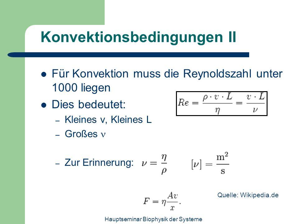 Hauptseminar Biophysik der Systeme Konvektionsbedingungen II Für Konvektion muss die Reynoldszahl unter 1000 liegen Dies bedeutet: – Kleines v, Kleine