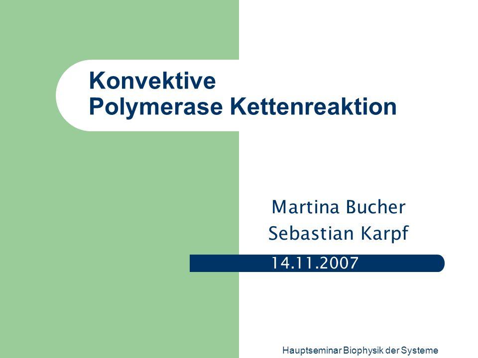Hauptseminar Biophysik der Systeme Konvektive Polymerase Kettenreaktion 14.11.2007 Martina Bucher Sebastian Karpf