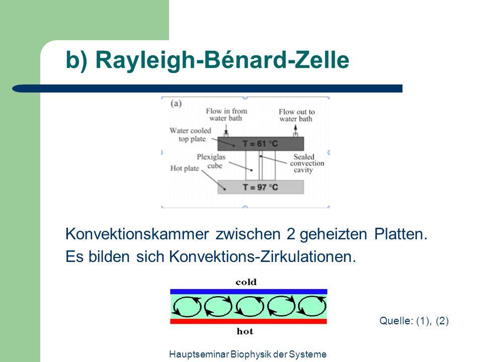 Hauptseminar Biophysik der Systeme b) Rayleigh-Bénard-Zelle Konvektionskammer zwischen 2 geheizten Platten. Es bilden sich Konvektions-Zirkulationen.