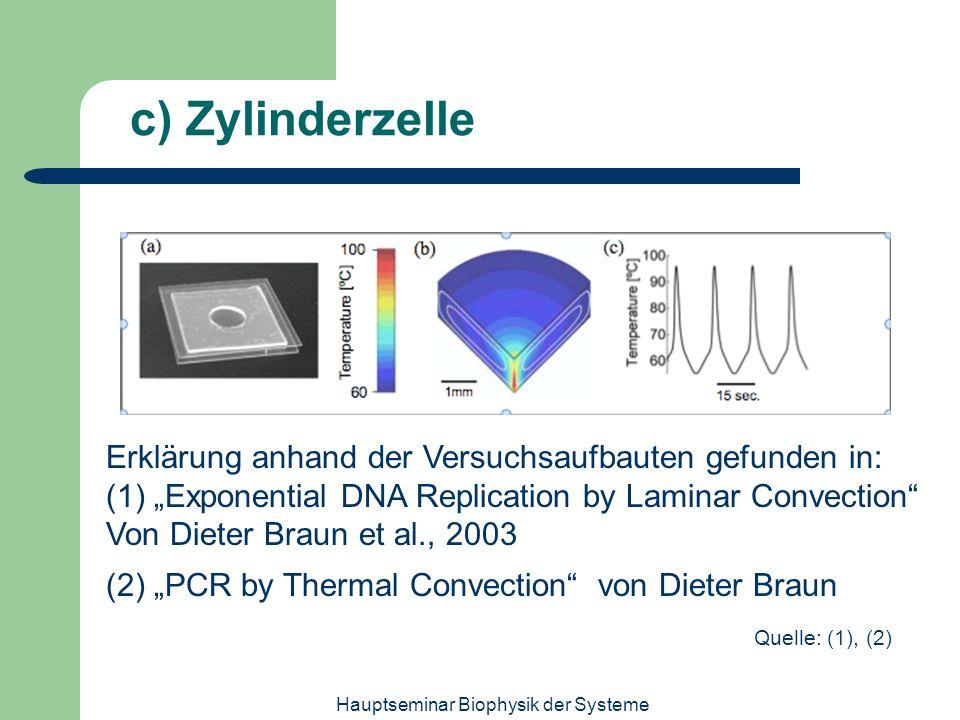Hauptseminar Biophysik der Systeme c) Zylinderzelle Erklärung anhand der Versuchsaufbauten gefunden in: (1) Exponential DNA Replication by Laminar Con