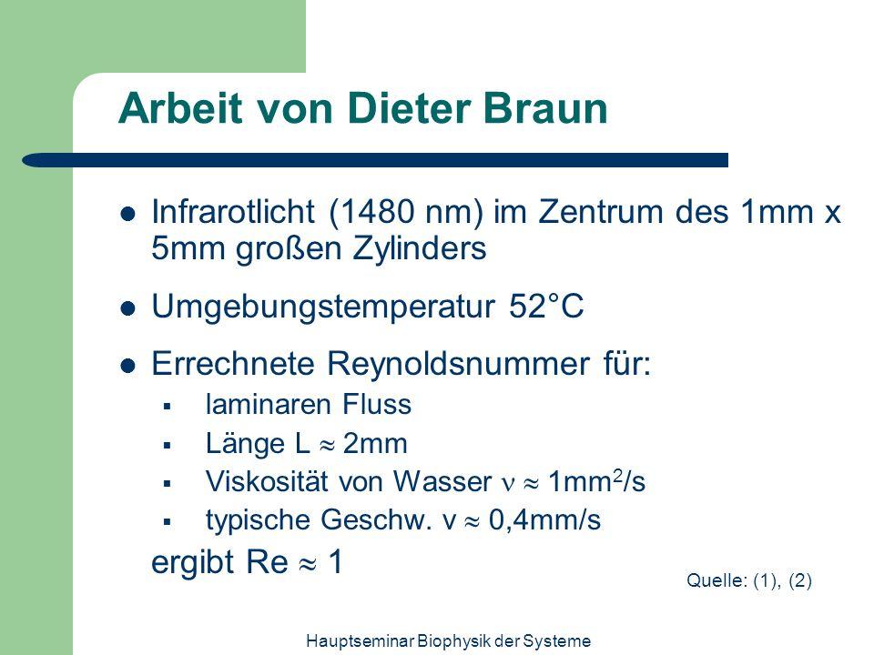Hauptseminar Biophysik der Systeme Arbeit von Dieter Braun Infrarotlicht (1480 nm) im Zentrum des 1mm x 5mm großen Zylinders Umgebungstemperatur 52°C