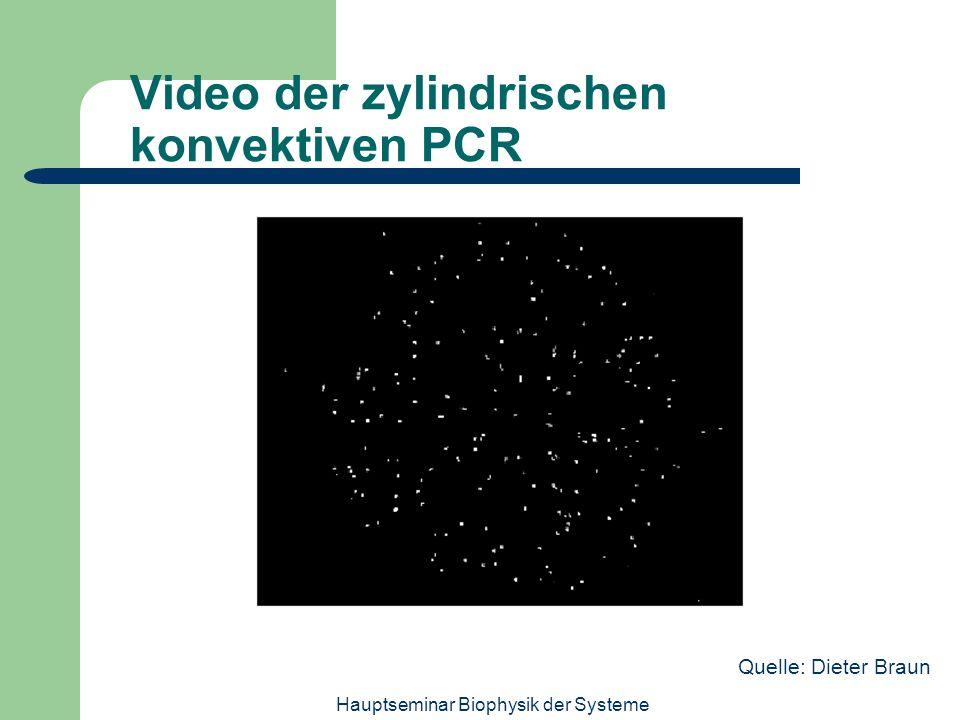 Hauptseminar Biophysik der Systeme Video der zylindrischen konvektiven PCR Quelle: Dieter Braun