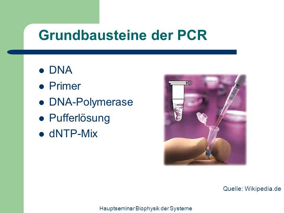 Hauptseminar Biophysik der Systeme Grundbausteine der PCR DNA Primer DNA-Polymerase Pufferlösung dNTP-Mix Quelle: Wikipedia.de