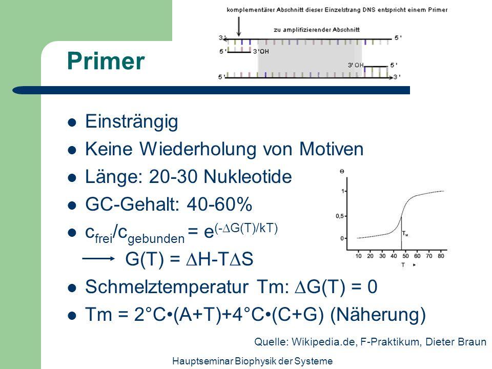 Hauptseminar Biophysik der Systeme Primer Einsträngig Keine Wiederholung von Motiven Länge: 20-30 Nukleotide GC-Gehalt: 40-60% c frei /c gebunden = e
