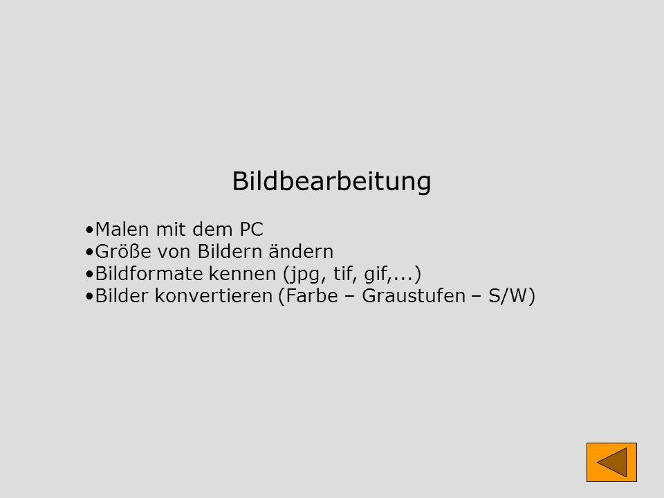 Bildbearbeitung Malen mit dem PC Größe von Bildern ändern Bildformate kennen (jpg, tif, gif,...) Bilder konvertieren (Farbe – Graustufen – S/W)