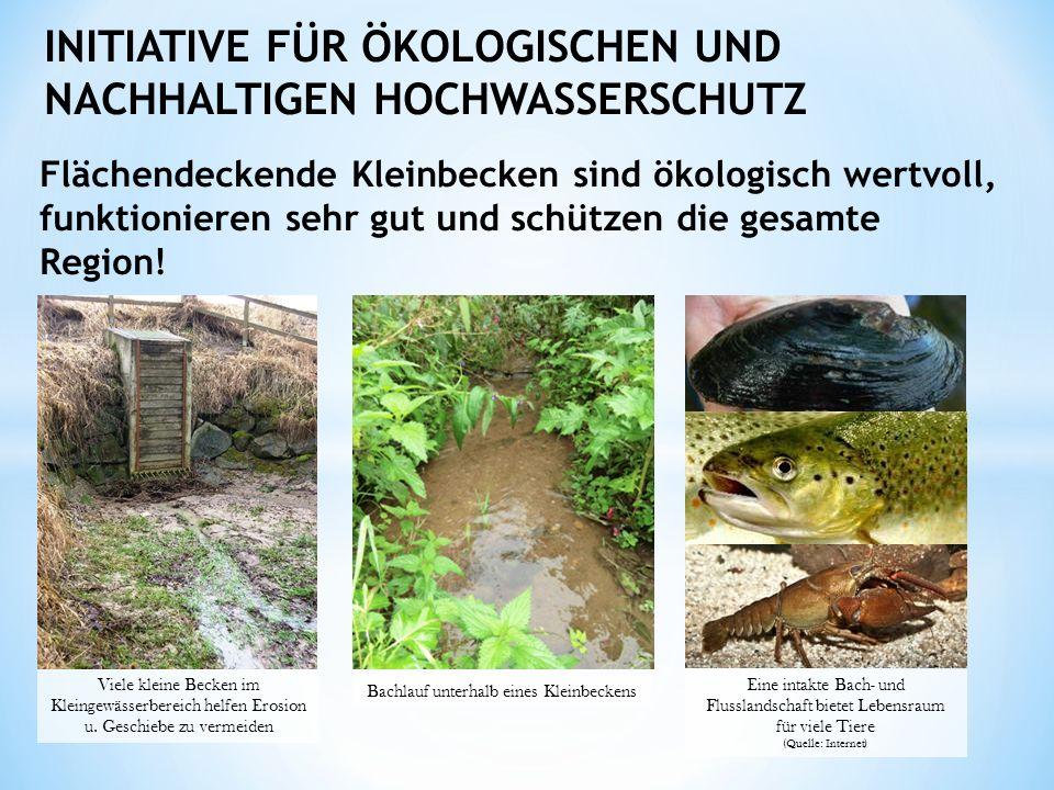 INITIATIVE FÜR ÖKOLOGISCHEN UND NACHHALTIGEN HOCHWASSERSCHUTZ Flächendeckende Kleinbecken sind ökologisch wertvoll, funktionieren sehr gut und schützen die gesamte Region.