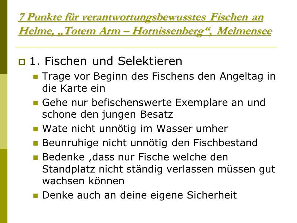 7 Punkte für verantwortungsbewusstes Fischen an Helme, Totem Arm – Hornissenberg, Melmensee 1.