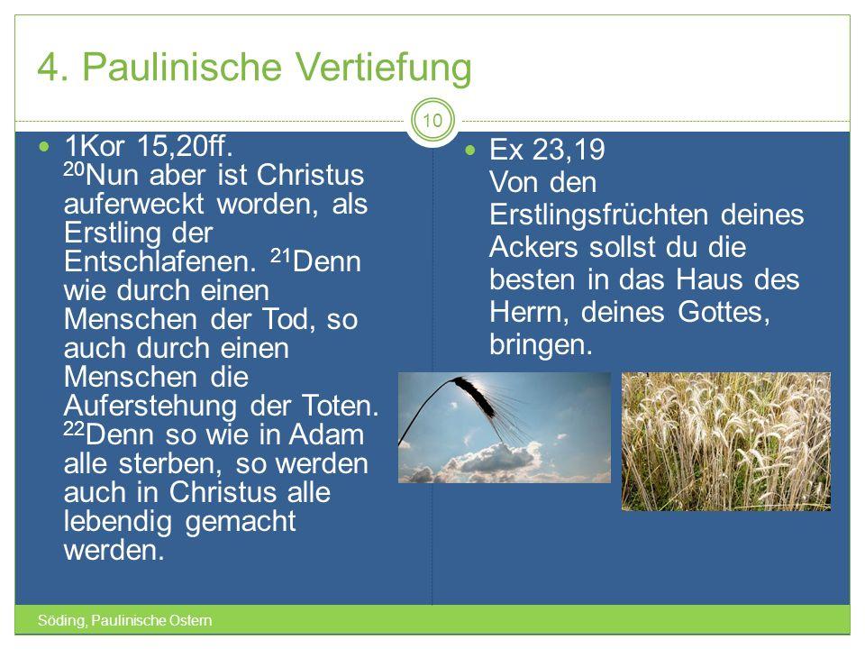4. Paulinische Vertiefung Söding, Paulinische Ostern 10 1Kor 15,20ff. 20 Nun aber ist Christus auferweckt worden, als Erstling der Entschlafenen. 21 D