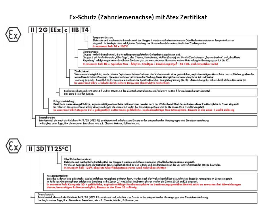 Ex-Schutz (Zahnriemenachse) mit Atex Zertifikat