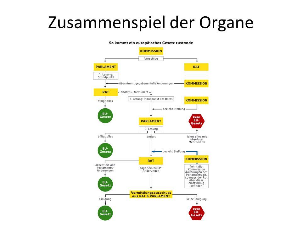 Zusammenspiel der Organe