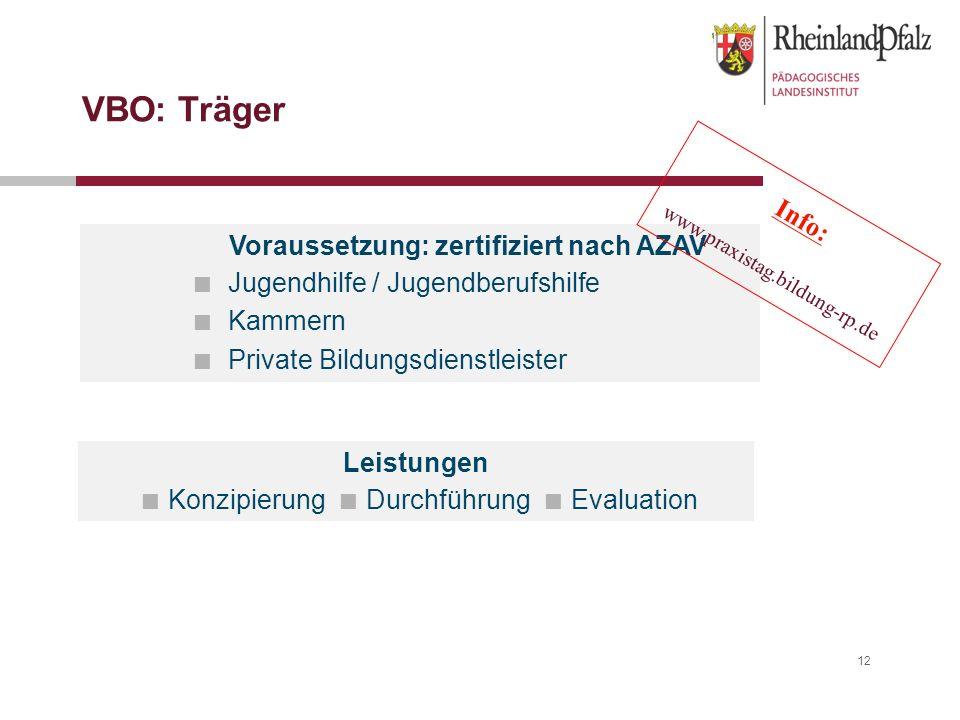 12 VBO: Träger Leistungen Konzipierung Durchführung Evaluation Voraussetzung: zertifiziert nach AZAV Jugendhilfe / Jugendberufshilfe Kammern Private B