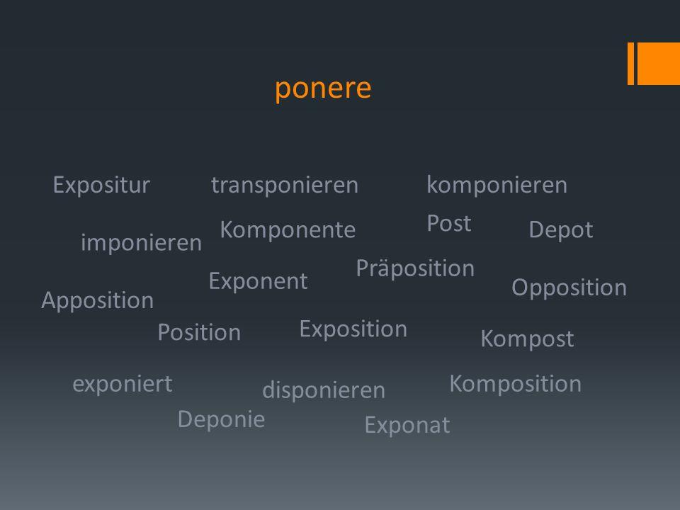 ponere Opposition Depot Expositur imponieren transponieren Präposition komponieren Kompost exponiert disponieren Apposition Exponent Post Komposition