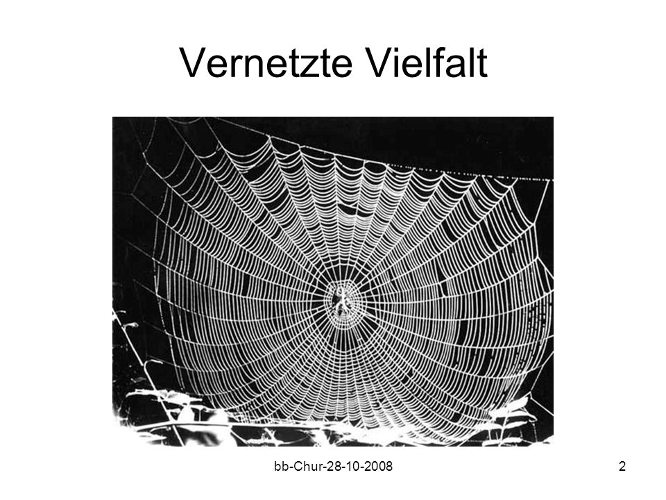 bb-Chur-28-10-20082 Vernetzte Vielfalt