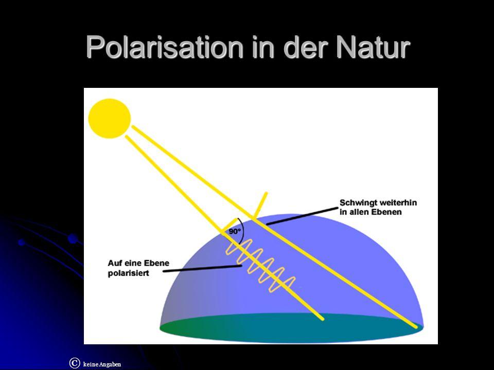 Polarisation durch Reflektion Wenn glatte Flächen fotografiert werden, kommt es zu starken Spiegelungen.