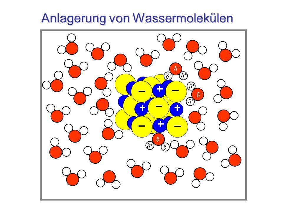 Ablösung von Ionen – – + + – + + – + + + –