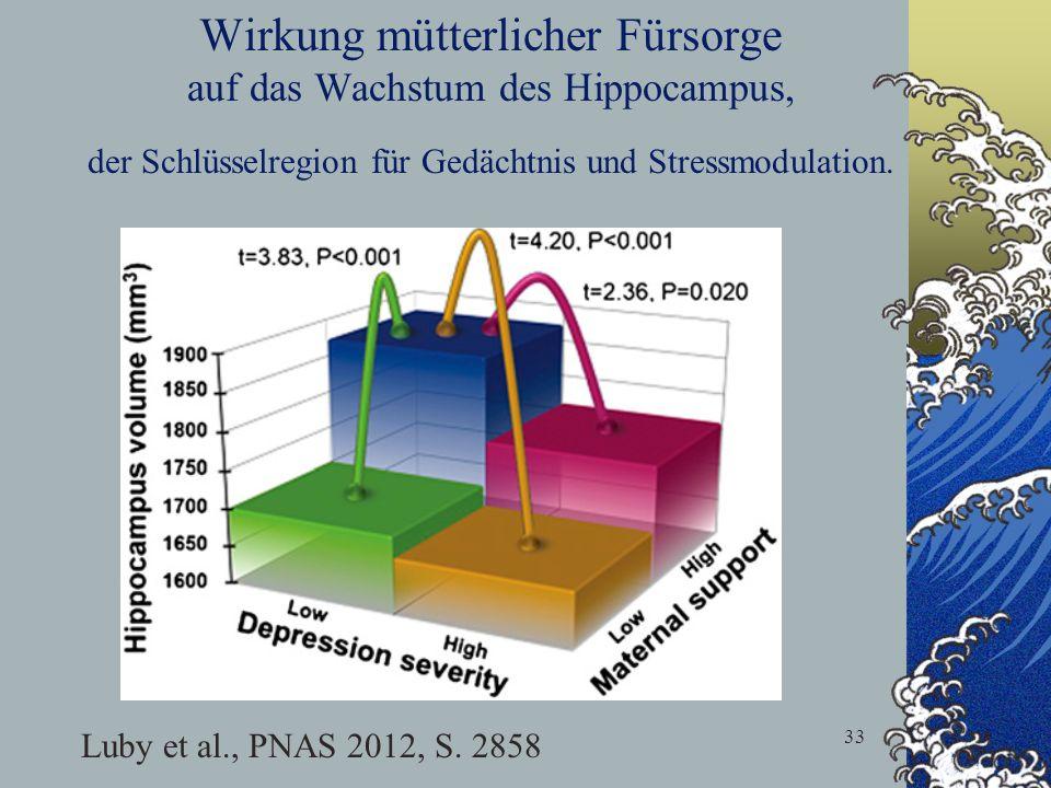 33 Wirkung mütterlicher Fürsorge auf das Wachstum des Hippocampus, der Schlüsselregion für Gedächtnis und Stressmodulation. Luby et al., PNAS 2012, S.