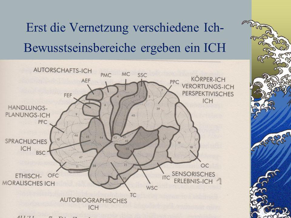 7 Erst die Vernetzung verschiedene Ich- Bewusstseinsbereiche ergeben ein ICH