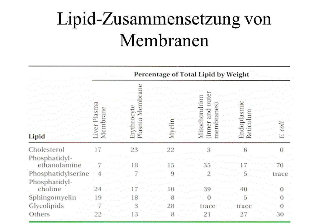 Lipid-Zusammensetzung von Membranen