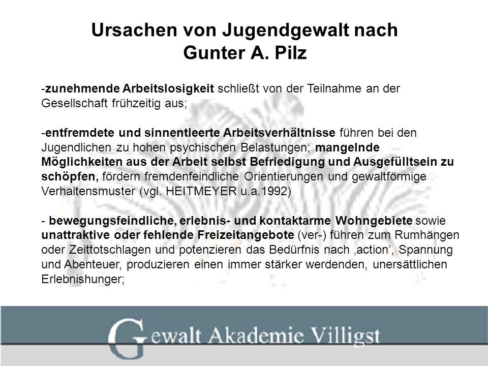 Ursachen von Jugendgewalt nach Gunter A. Pilz -zunehmende Arbeitslosigkeit schließt von der Teilnahme an der Gesellschaft frühzeitig aus; -entfremdete