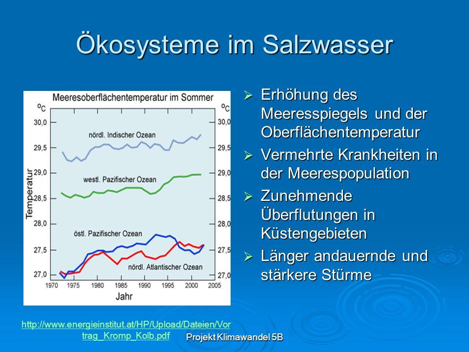 Projekt Klimawandel 5B Ökosysteme im Salzwasser Erhöhung des Meeresspiegels und der Oberflächentemperatur Erhöhung des Meeresspiegels und der Oberflächentemperatur Vermehrte Krankheiten in der Meerespopulation Vermehrte Krankheiten in der Meerespopulation Zunehmende Überflutungen in Küstengebieten Zunehmende Überflutungen in Küstengebieten Länger andauernde und stärkere Stürme Länger andauernde und stärkere Stürme http://www.energieinstitut.at/HP/Upload/Dateien/Vor trag_Kromp_Kolb.pdf