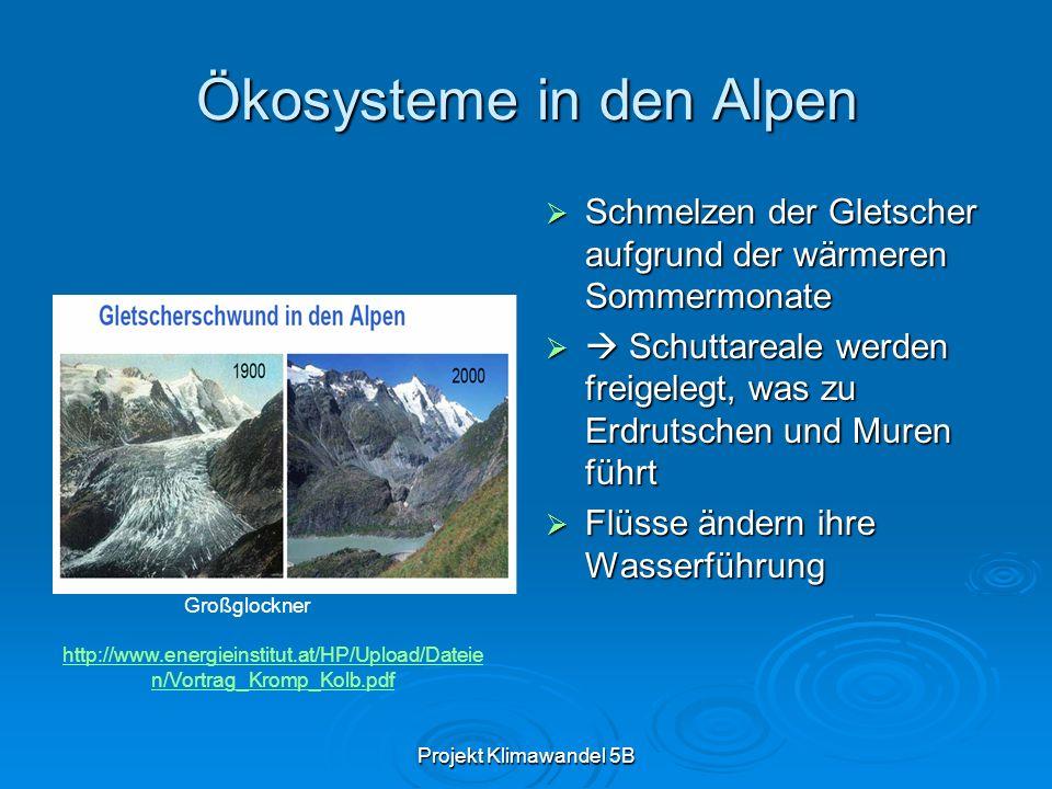 Projekt Klimawandel 5B Ökosysteme in den Alpen Schmelzen der Gletscher aufgrund der wärmeren Sommermonate Schmelzen der Gletscher aufgrund der wärmeren Sommermonate Schuttareale werden freigelegt, was zu Erdrutschen und Muren führt Schuttareale werden freigelegt, was zu Erdrutschen und Muren führt Flüsse ändern ihre Wasserführung Flüsse ändern ihre Wasserführung http://www.energieinstitut.at/HP/Upload/Dateie n/Vortrag_Kromp_Kolb.pdf Großglockner