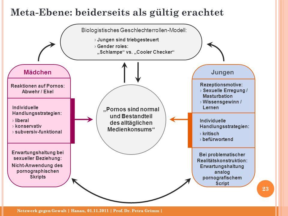 Netzwerk gegen Gewalt | Hanau, 01.11.2011 | Prof. Dr. Petra Grimm | Pornos sind normal und Bestandteil des alltäglichen Medienkonsums Biologistisches
