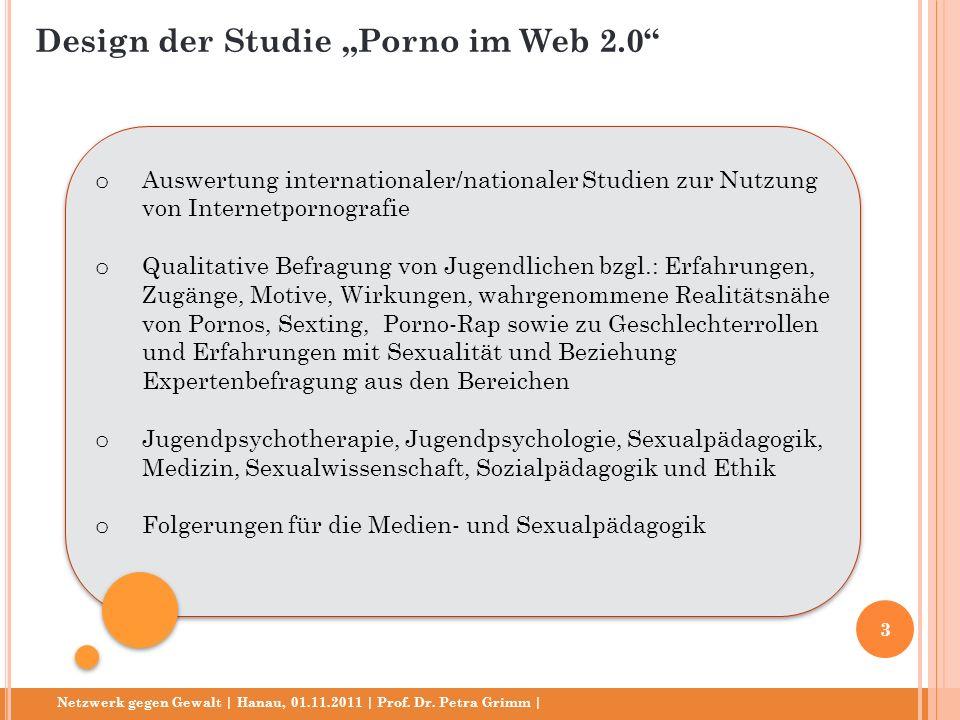 Netzwerk gegen Gewalt | Hanau, 01.11.2011 | Prof. Dr. Petra Grimm | o Auswertung internationaler/nationaler Studien zur Nutzung von Internetpornografi
