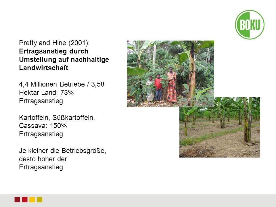 Pretty and Hine (2001): Ertragsanstieg durch Umstellung auf nachhaltige Landwirtschaft 4,4 Millionen Betriebe / 3,58 Hektar Land: 73% Ertragsanstieg.
