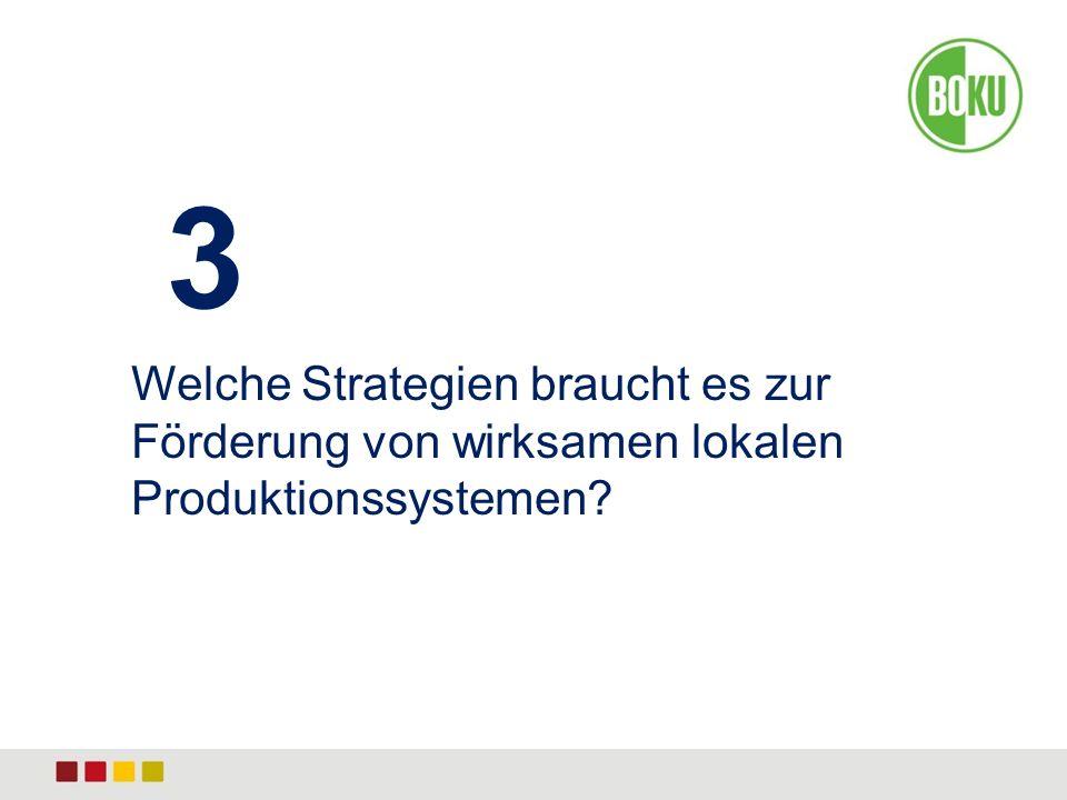 3 Welche Strategien braucht es zur Förderung von wirksamen lokalen Produktionssystemen