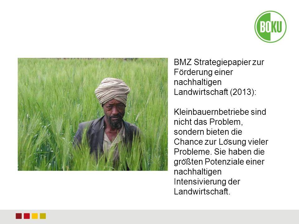 Bild BMZ Strategiepapier zur Förderung einer nachhaltigen Landwirtschaft (2013): Kleinbauernbetriebe sind nicht das Problem, sondern bieten die Chance zur Lo ̈ sung vieler Probleme.
