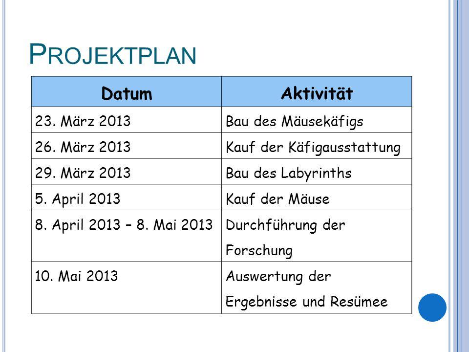 P ROJEKTPLAN DatumAktivität 23. März 2013Bau des Mäusekäfigs 26.