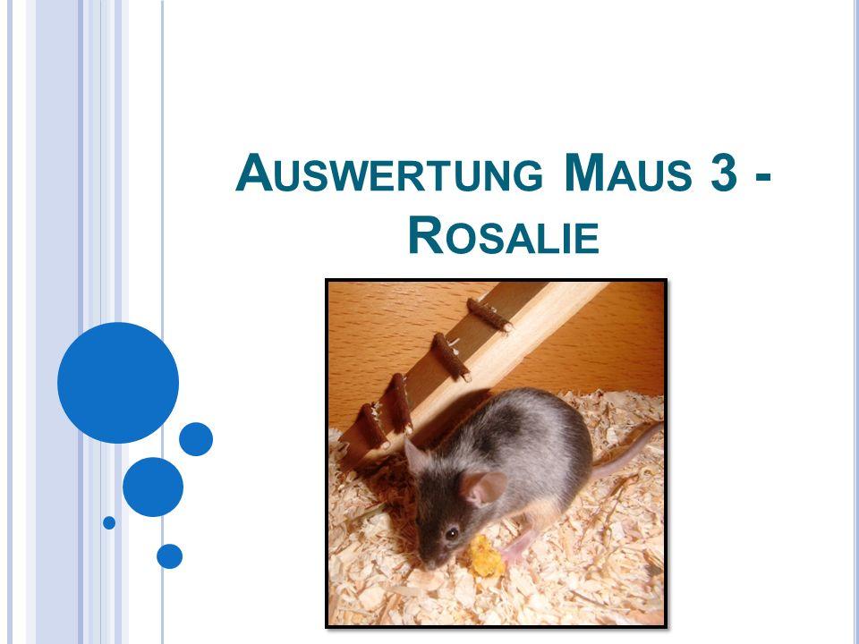 A USWERTUNG M AUS 3 - R OSALIE