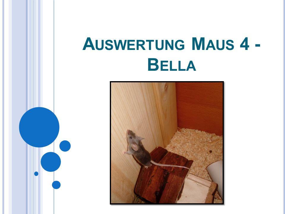 A USWERTUNG M AUS 4 - B ELLA