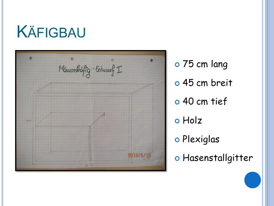K ÄFIGBAU 75 cm lang 45 cm breit 40 cm tief Holz Plexiglas Hasenstallgitter